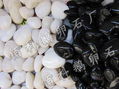 纯黑抛光鹅卵石BK二纯黑PK纯白